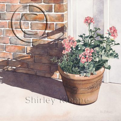 Dance Door Geraniums by Shirley Kleppe
