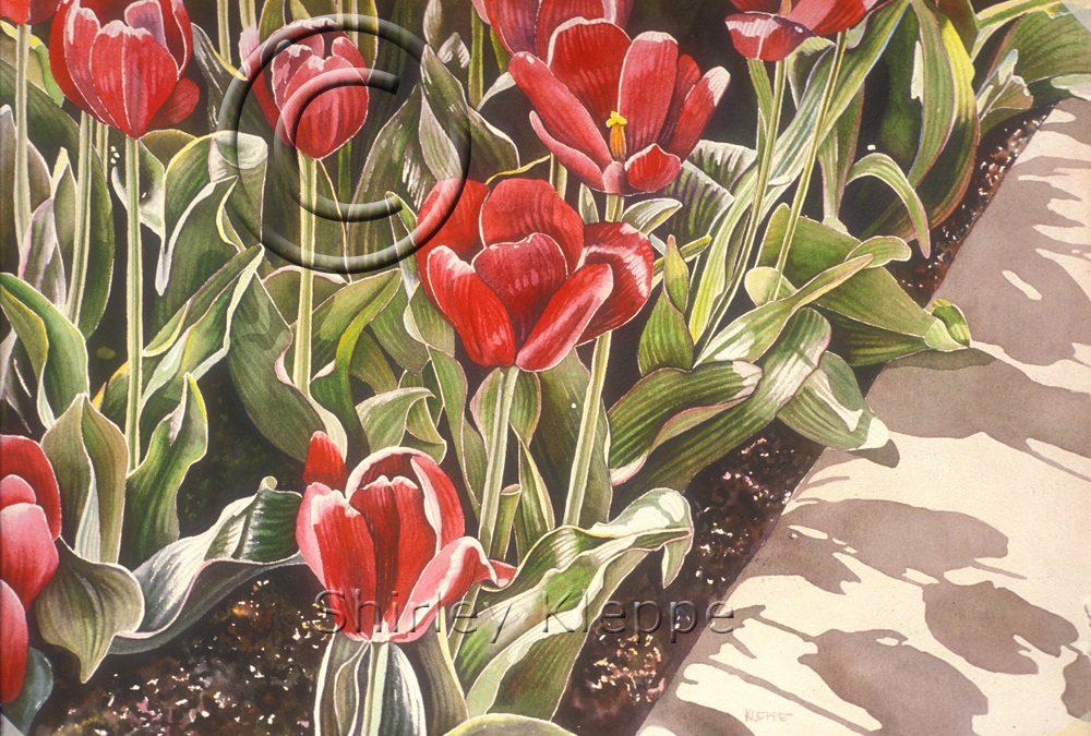Spring Rubies