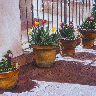 Summer Serenade - The Artwork of Shirley Kleppe